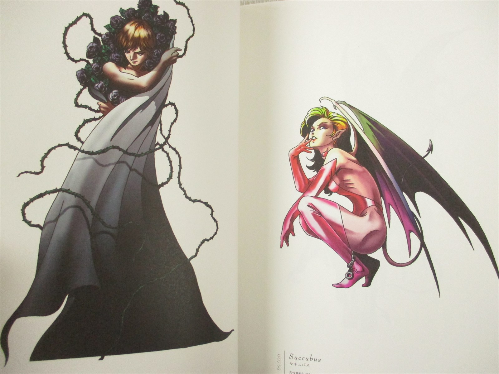 KAZUMA KANEKO Gashu I 1 w//Booklet Plastic Sheet Art Design Works Book SK55