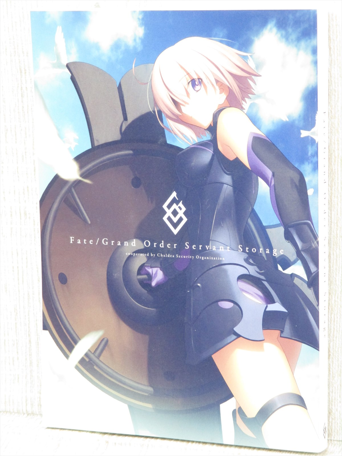 FATE GRAND ORDER Servant Storage Art Guide Book Ltd Type